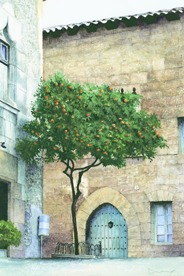 The Orange Tree - Seville